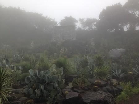 シャボテン公園