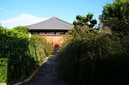 秋晴れの常林寺
