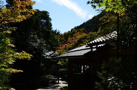 少し色づいた光悦寺