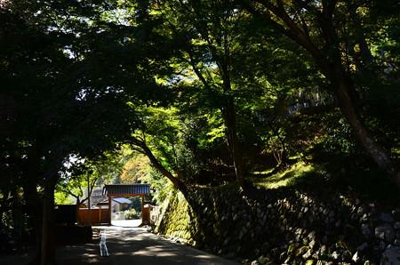 山門への道