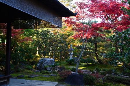 紅葉の西村家庭園