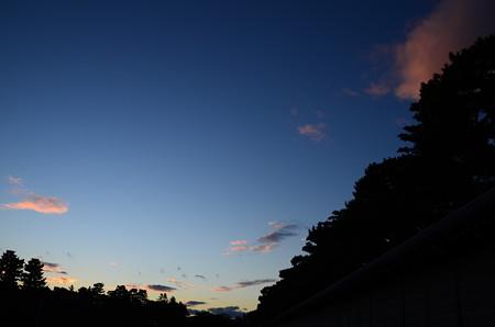 夕焼けの京都御苑