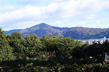 建勲神社からの眺め