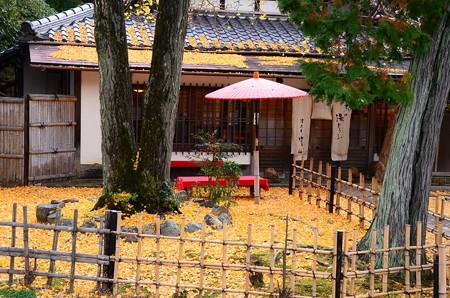 公孫樹の落ち葉に埋まる湯どうふ竹仙