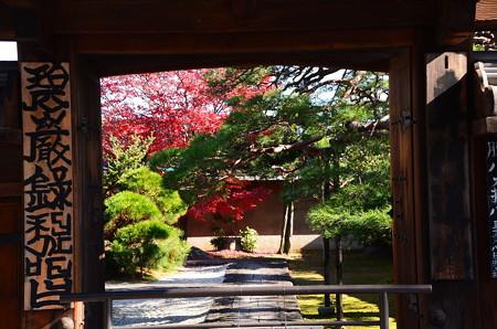 相国寺の紅葉景色