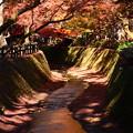 赤く染まる紙屋川