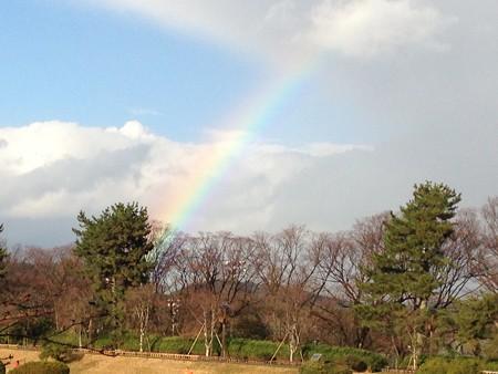 植物園に架かる虹