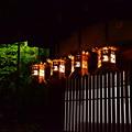 Photos: 新年の下鴨神社