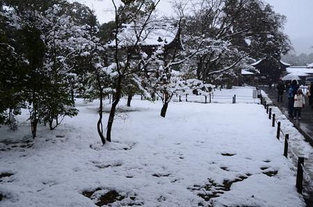 吹雪の金閣寺