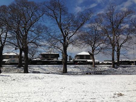 青空と雪の賀茂川