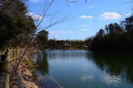 雲を映す永谷池