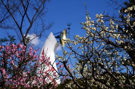 紅白の梅と太陽の塔