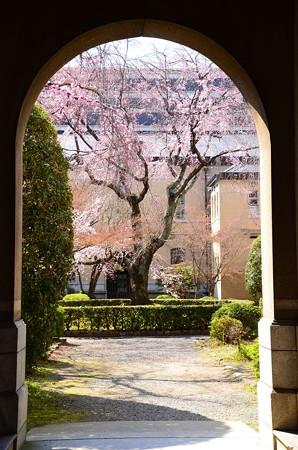 府庁旧館の春