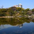 写真: 青空を映す印月池