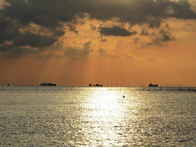 朝陽に輝く別府湾_9903