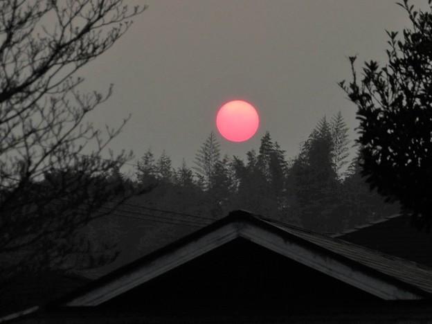 赤い朝陽(pm2.5の影響)_8824