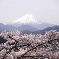写真: 岩殿山円山公園