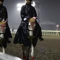 写真: 川崎競馬の誘導馬04月開催 重賞Ver-120409-06-large