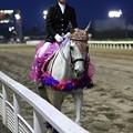 写真: 川崎競馬の誘導馬05月開催 藤Ver-120514-06-large