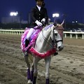 写真: 川崎競馬の誘導馬05月開催 藤Ver-120516-05-large
