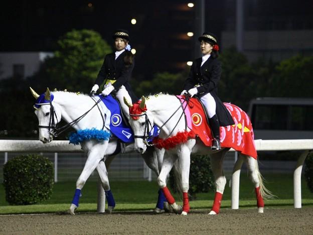 写真: 川崎競馬の誘導馬05月開催 重賞Ver-120516-01-large