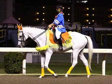 川崎競馬の誘導馬 8月開催 神楽酒造盃くろうま賞Ver 2