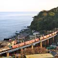 Photos: 夕日を浴びて上京するEF210電機が牽引する貨物列車