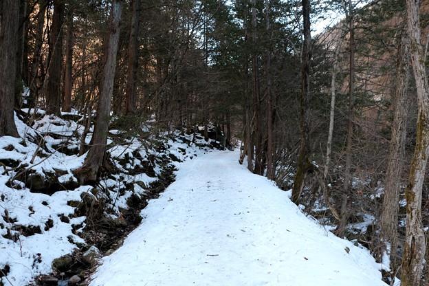 積雪の横谷峡遊歩道