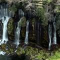 日本の滝百選「白糸の滝」
