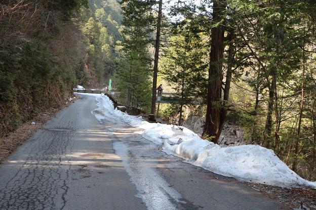 残雪の散策路