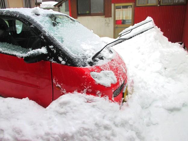 久々の大雪