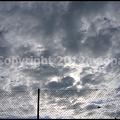 Photos: P3140272