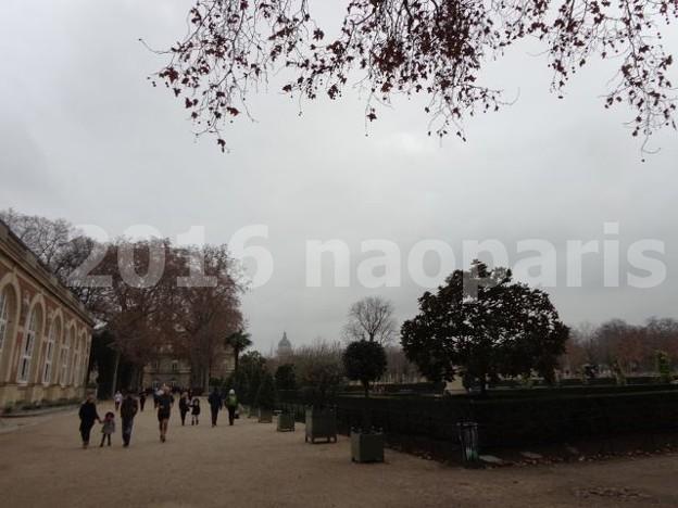 写真: image001 (2)