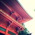 Red Shurine