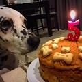 Birthday girl and B-day cake♪