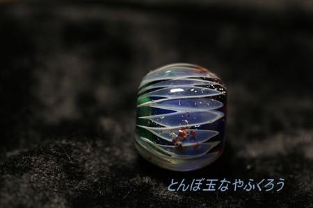 とんぼ玉 H28.10.13 2