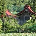 Photos: 諏訪神社(南陽市)