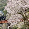 Photos: 大井川鐵道 川根温泉笹間渡~地名