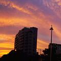 写真: 火燒雲