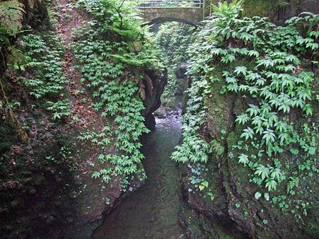 岩室の滝 2011.5.28-4