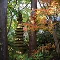 Photos: 十三重石塔