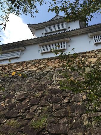 20160821津山城城(2)