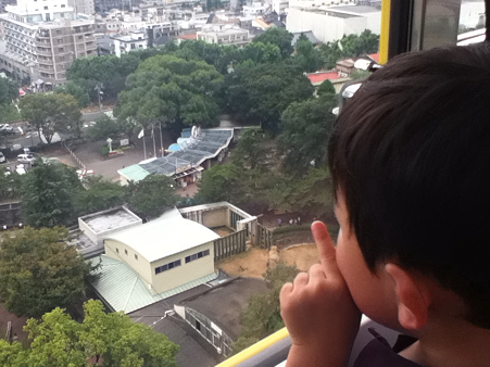 20110827王子動物園(6)