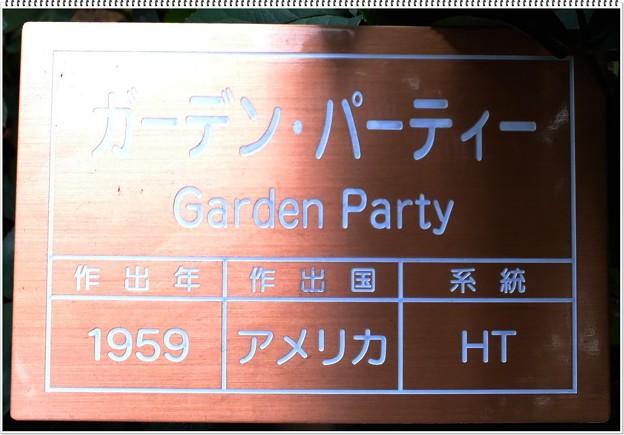 ガーデン・パーティー