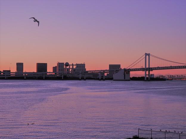 写真: 竹芝桟橋からお台場を望む