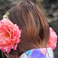 写真: 髪飾り