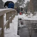 写真: 橋の上の雪掻き