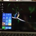 Photos: Windows10アップグレード(起動画面・背景画像)