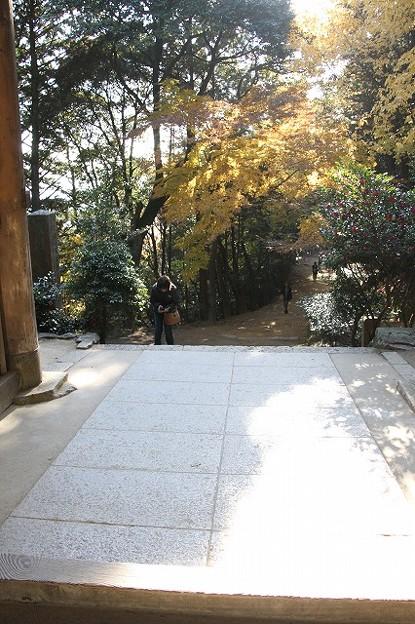 書写山円教寺(兵庫県姫路市)(3)
