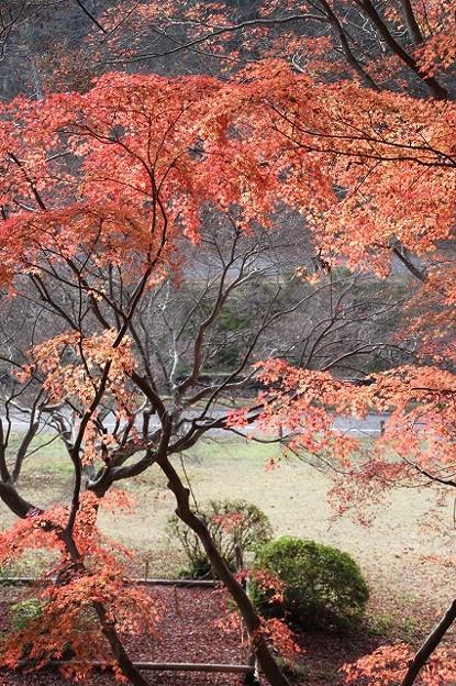 伽耶院(兵庫県三木市)(6)